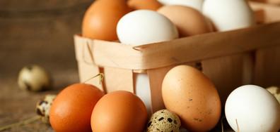 Как да разпознаем опасните яйца със салмонела?