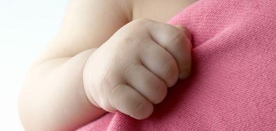 Проф. Щерев: Оптимална възраст за раждане на първо дете е между 18 и 24 г.