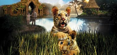 Братята тигри