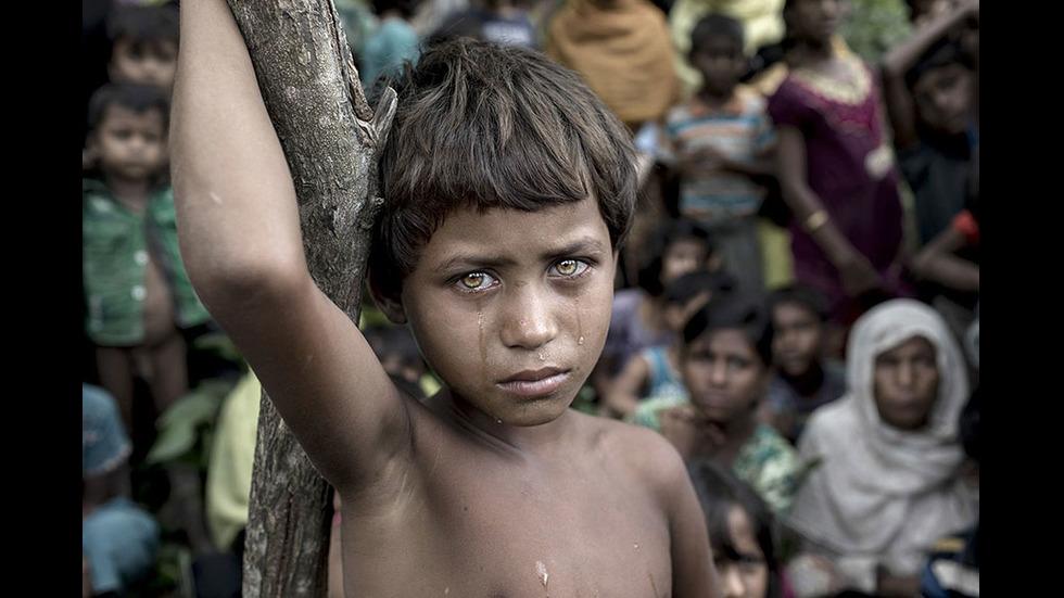 Спиращи дъха снимки, заслужили международни награди