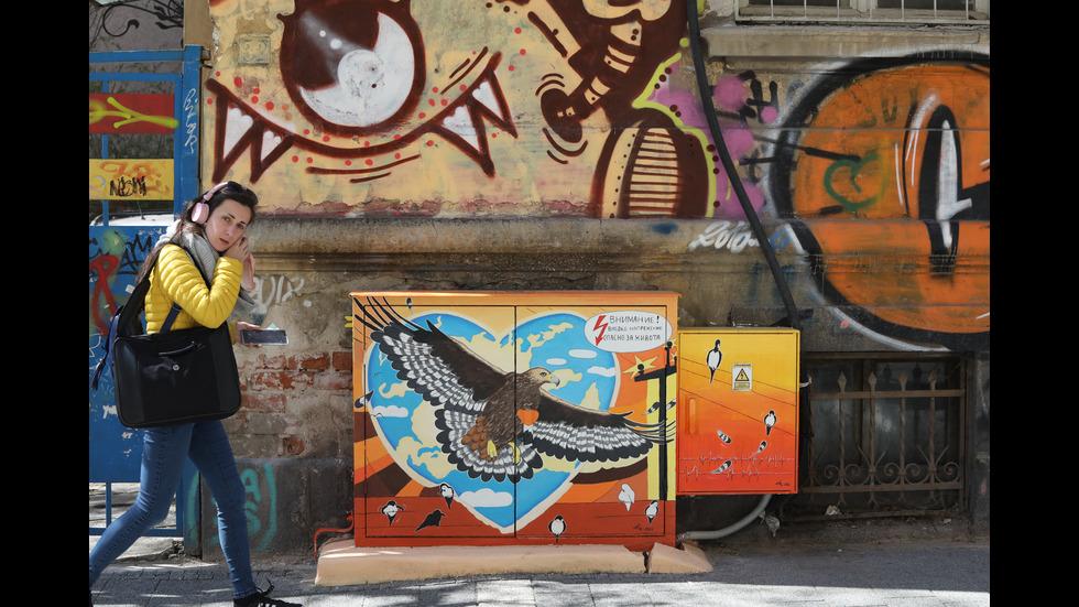Художничка превърна улица в София в галерия на открито