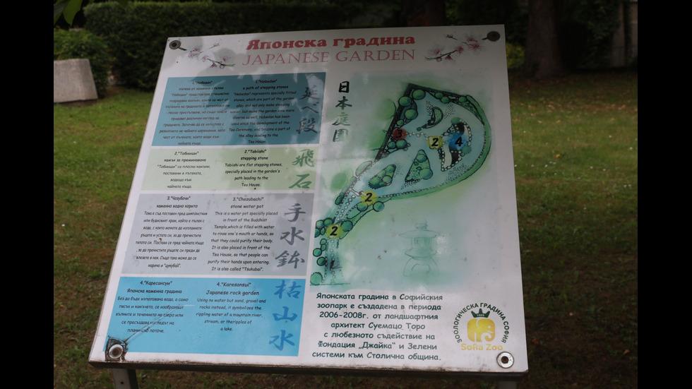 Японската градина в Софийския зоопарк
