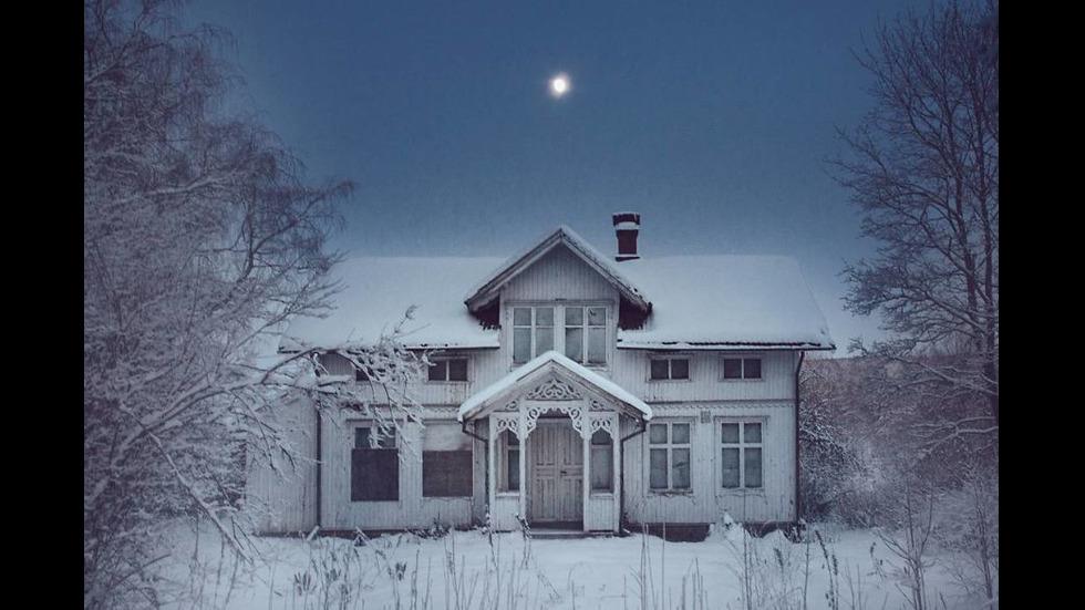 Фотографка продаде апартамента си и се премести в Арктика