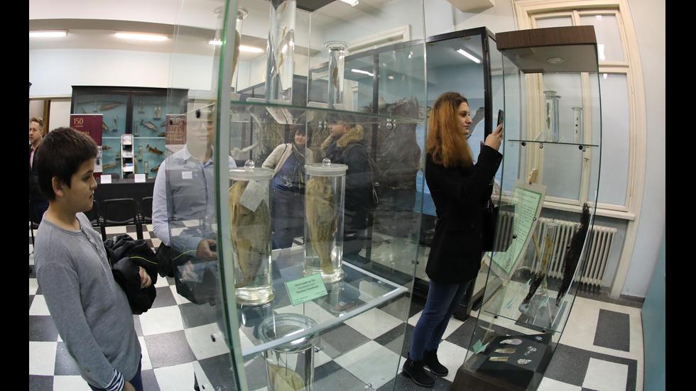 """Откриха постоянна експозиция """"Биоразнообразието на Арктика"""" в НПМ"""