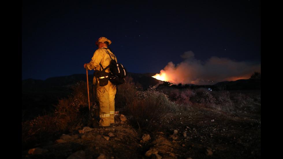 Над 8000 евакуирани заради пожари в Калифорния