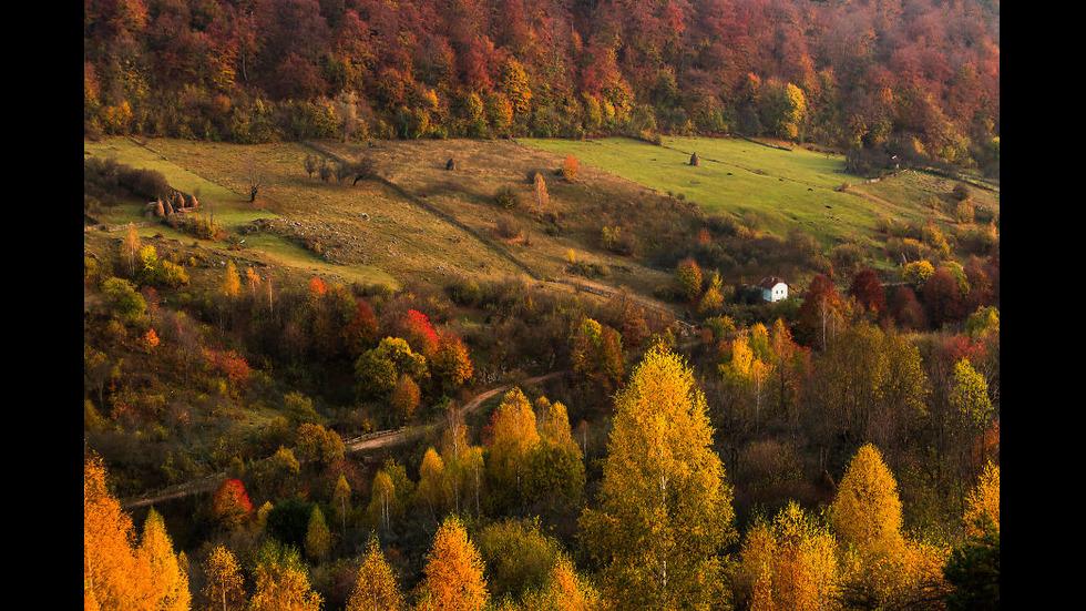 Да пропътуваш Трансилвания, въоръжен с... фотоапарат