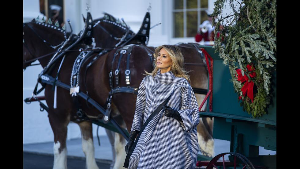 Мелания Тръмп посрещна коледната елха на Белия дом