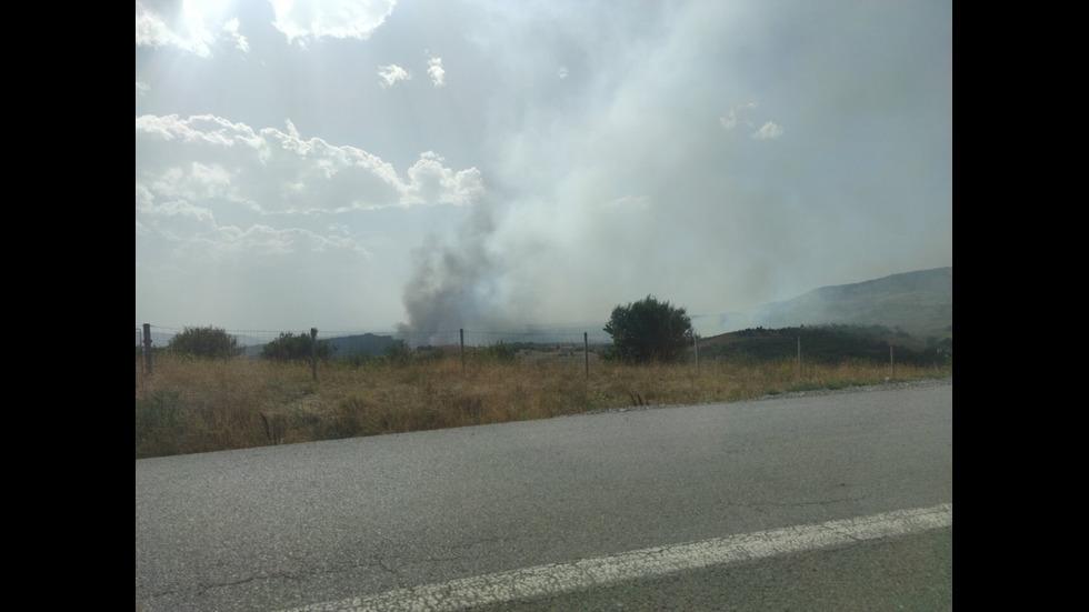 Огромен пожар застрашава гората над Големо Бучино