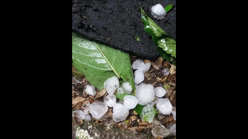 Мощна буря с градушка удари Северозападна България