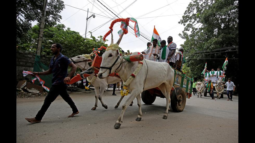 Волски каруци на протест срещу скъпите горива