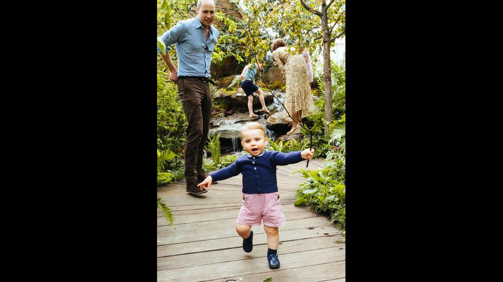 КРАЛСКАТА ГРАДИНА: Показаха къде играят децата на принц Уилям и Кейт