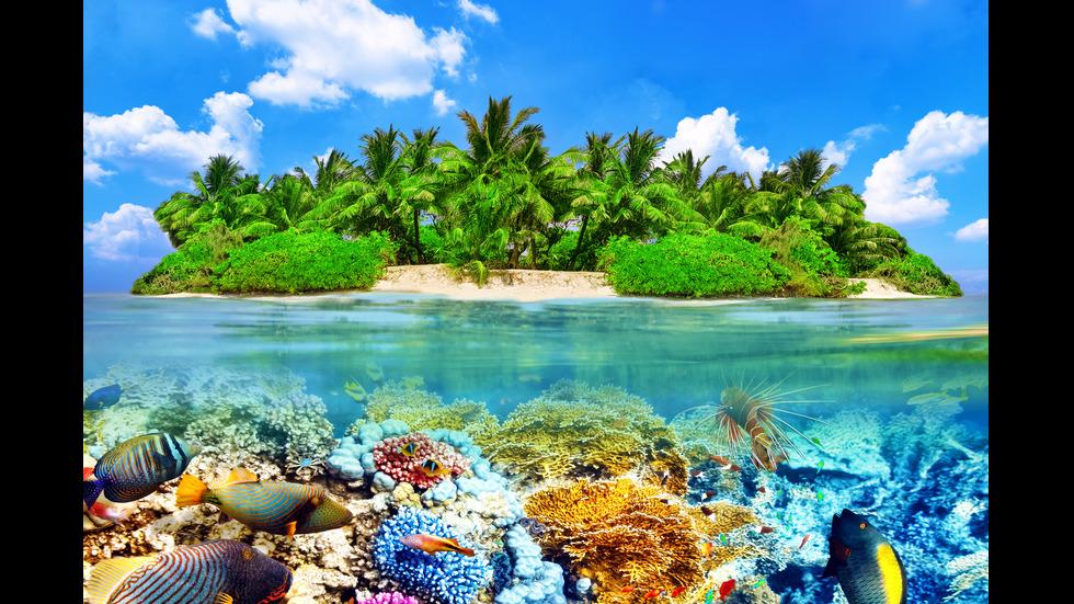 Местата с най-синята вода в света