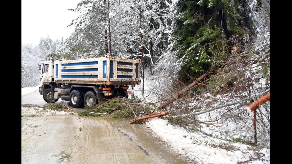 Мокрият сняг отряза пътя до село Плана