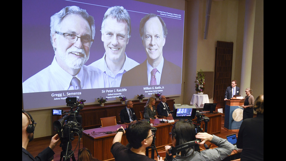 Уилям Каелин, Грег Семенца и Питър Ратклиф спечелиха Нобелова награда за медицина