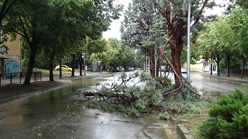 Пороен дъжд наводни Благоевград