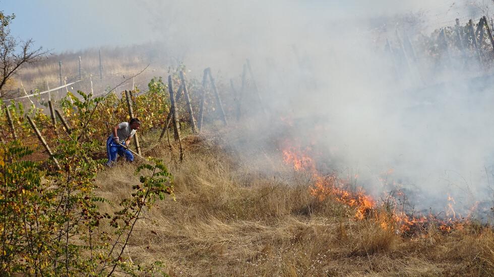 Треви и храсти горяха при пожар край Благоевград