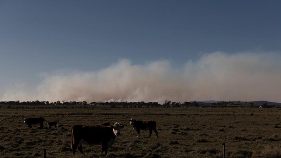 Армията ще помага на пожарникарите в Австралия