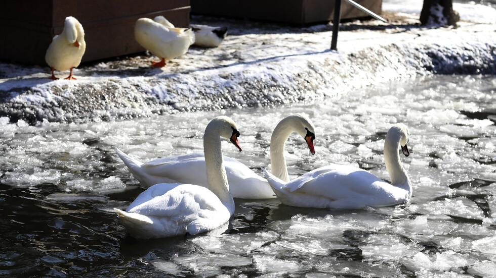 -30 В ТУРЦИЯ: Замръзнали реки и хора със заскрежени лица заради студа