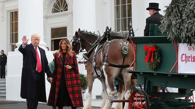 Доставиха коледното дърво в Белия дом