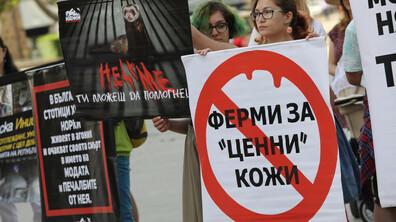 Протест срещу убиването на животни за кожите им