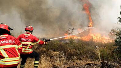 Поне 20 души са ранени при десетки горски пожари в Португалия