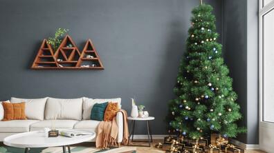 Какво да изхвърлим от дома си преди Коледа