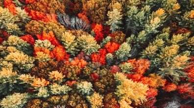 Най-красивите места в света, които да посетите през есента