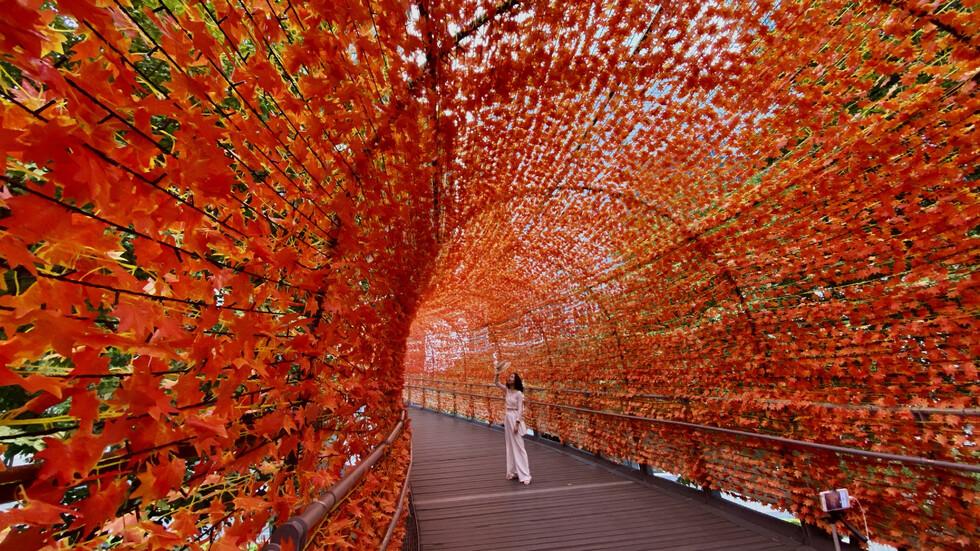 Есен в Тайван