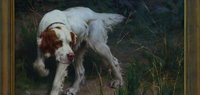 Музей на кучетата и поляци строят иглута