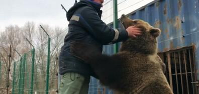 Първият подводен ресторант в Европа и мечка за домашен любимец