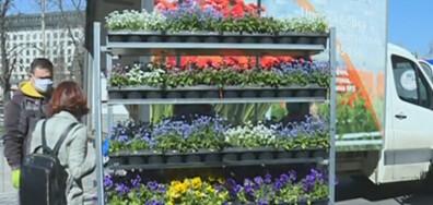 """Над 1000 цветя за медиците от """"Пирогов"""""""