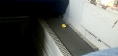 Мишка във влака