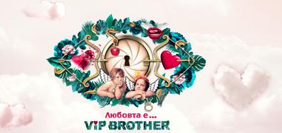 Любовта е във VIP Brother тази есен по NOVA