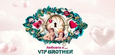 Многото лица на любовта на живо на старта на VIP Brother 2017 по NOVA